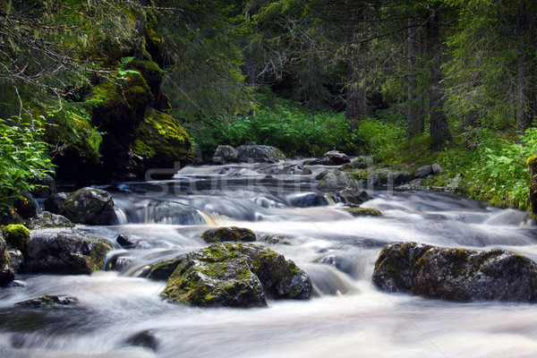 Wodospad Szwecja wody charakter ruchu naturalnych Zdjęcia stock © mikdam