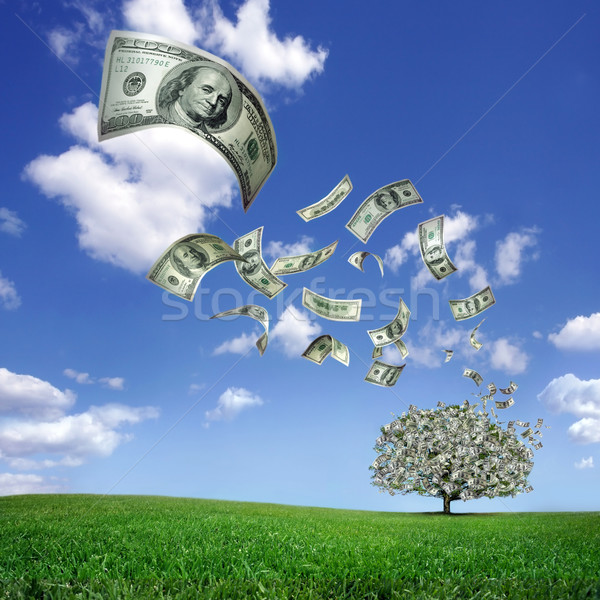 Stock photo: falling dollar bills from money tree
