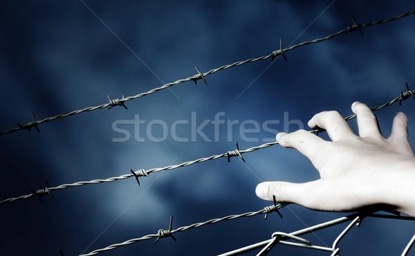 Dikenli tel el Stok fotoğraf © mikdam