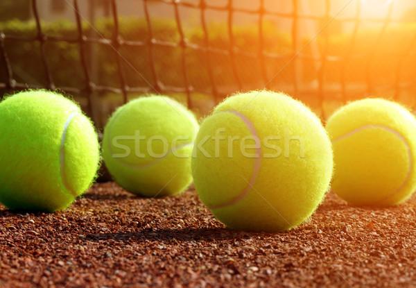 Bola de tênis quadra de tênis fitness esportes tribunal close-up Foto stock © mikdam