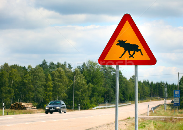 Moose segno Svezia animale cartello stradale Foto d'archivio © mikdam