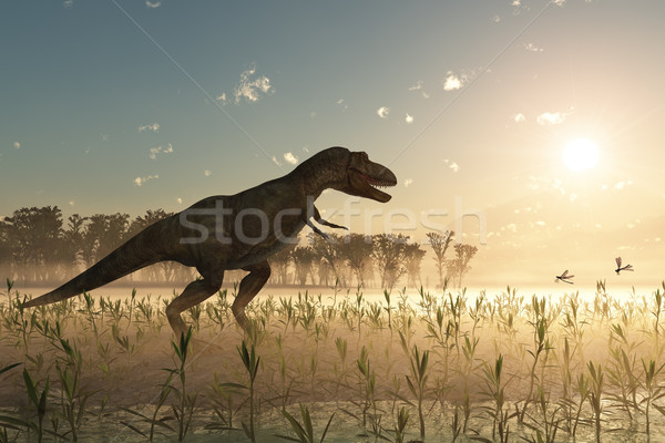 Dinosaures sunrise ciel eau herbe vie Photo stock © mike_kiev
