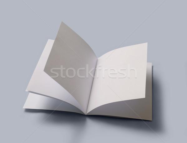 Açık kitap eğitim beyaz medya belge Stok fotoğraf © mike_kiev