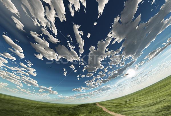 Sferico cielo campo erba strada mondo Foto d'archivio © mike_kiev