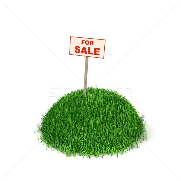 Gruntów sprzedaży billboard Hill zielona trawa działalności Zdjęcia stock © mike_kiev