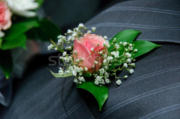 red rose on a groom coat Stock photo © mikhail_ulyannik