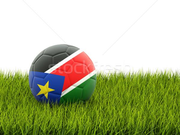 Piłka nożna banderą południe Sudan zielona trawa piłka nożna Zdjęcia stock © MikhailMishchenko