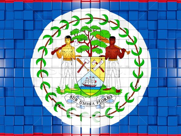 Tér alkatrészek zászló Belize 3d illusztráció mozaik Stock fotó © MikhailMishchenko