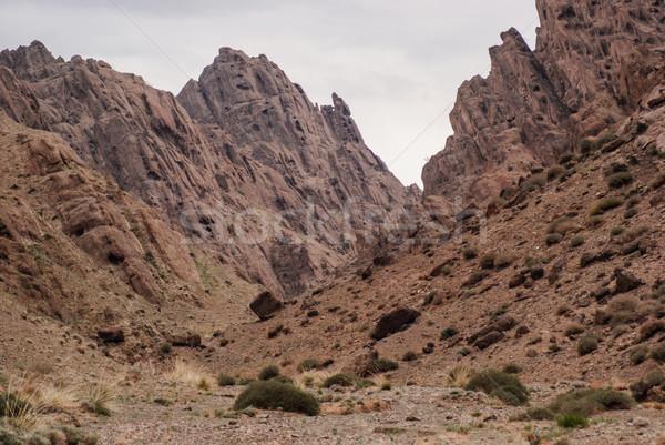 高原 南西 東部 砂漠 旅行 国 ストックフォト © MikhailMishchenko
