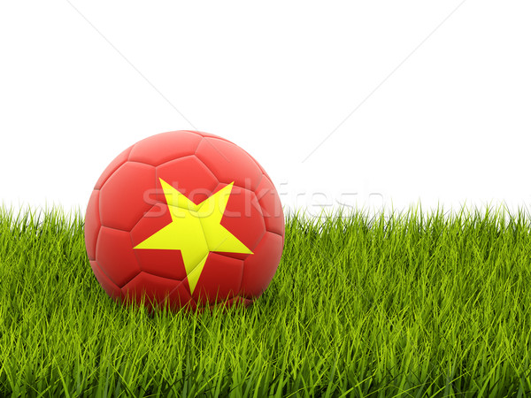 футбола флаг Вьетнам зеленая трава Футбол области Сток-фото © MikhailMishchenko