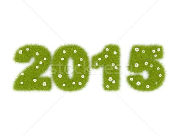 Green 2015 New Year sign Stock photo © MikhailMishchenko