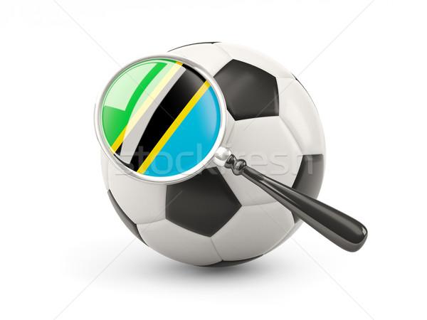 Futbol bayrak Tanzanya yalıtılmış beyaz Stok fotoğraf © MikhailMishchenko