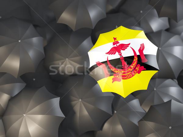 Paraplu vlag Brunei top zwarte parasols Stockfoto © MikhailMishchenko