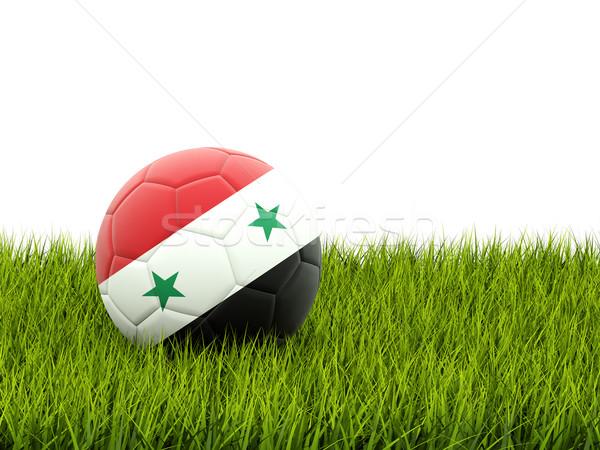Voetbal vlag Syrië groen gras voetbal wereld Stockfoto © MikhailMishchenko