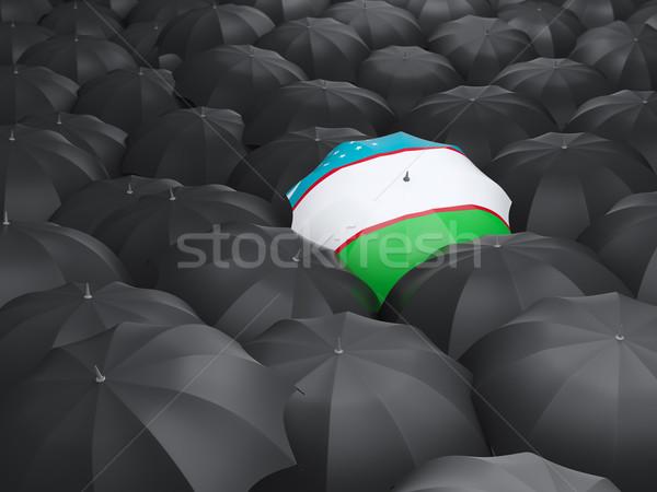 şemsiye bayrak Özbekistan siyah seyahat Stok fotoğraf © MikhailMishchenko