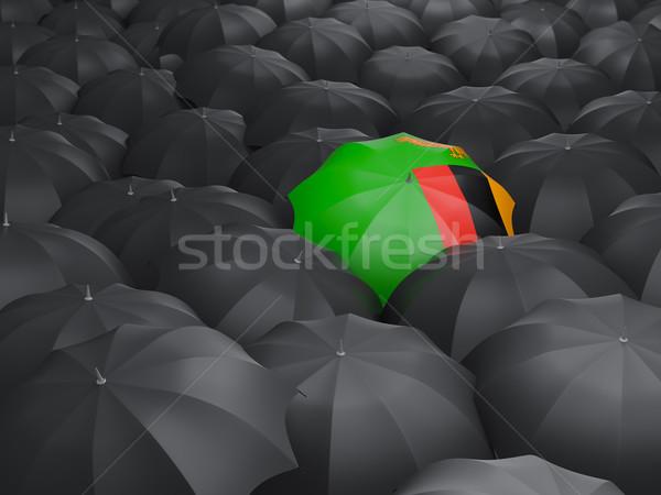 зонтик флаг Замбия черный путешествия Сток-фото © MikhailMishchenko
