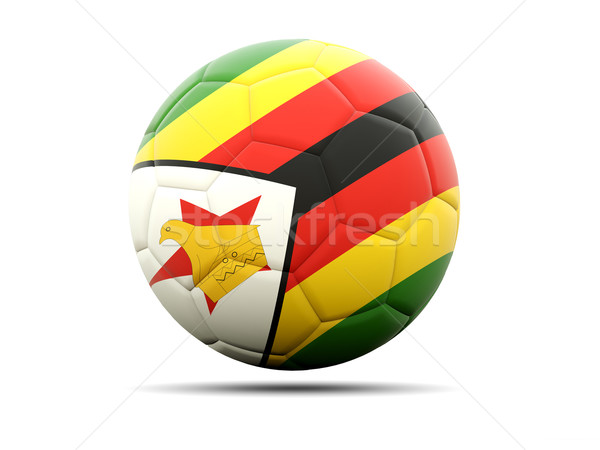 Football pavillon Zimbabwe 3d illustration football sport Photo stock © MikhailMishchenko