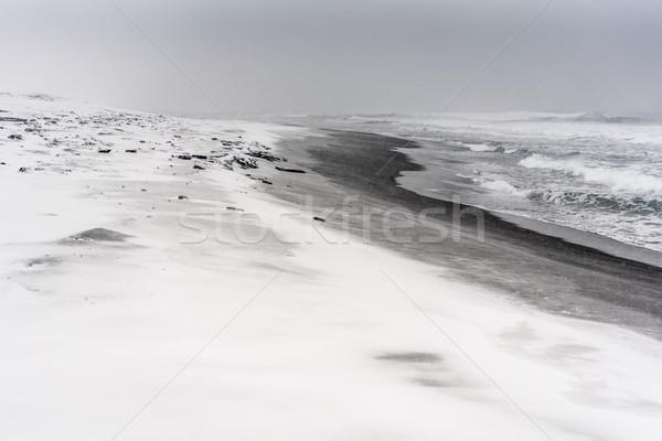 Nevasca praia oceano preto areia mar Foto stock © MikhailMishchenko