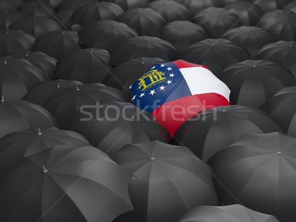 Georgia bayrak şemsiye Amerika Birleşik Devletleri yerel bayraklar Stok fotoğraf © MikhailMishchenko