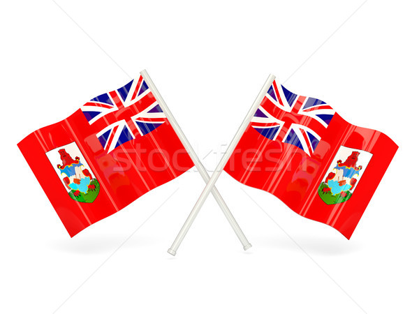 Bayrak iki dalgalı bayraklar yalıtılmış beyaz Stok fotoğraf © MikhailMishchenko