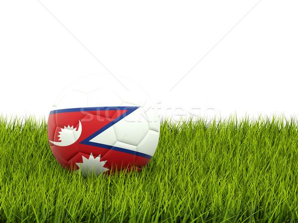 футбола флаг Непал зеленая трава Футбол Мир Сток-фото © MikhailMishchenko