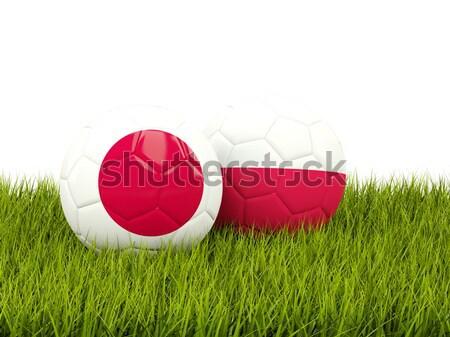 Japão vs Polônia futebol bandeiras verde Foto stock © MikhailMishchenko