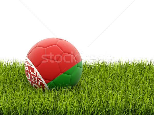 Football with flag of belarus Stock photo © MikhailMishchenko