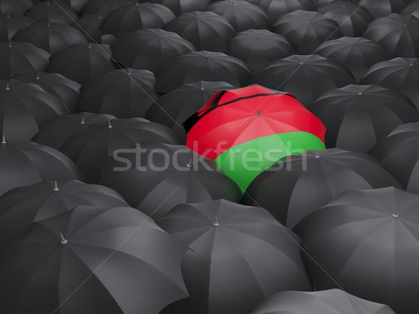 зонтик флаг Малави черный путешествия Сток-фото © MikhailMishchenko