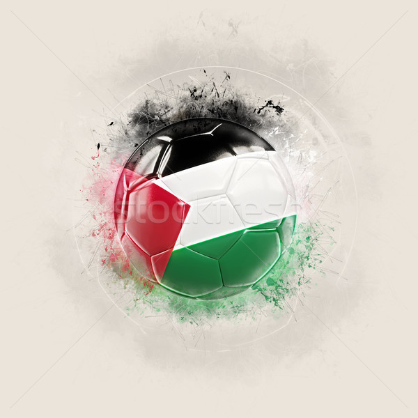 Stock photo: Grunge football with flag of palestinian territory