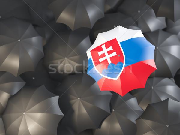 şemsiye bayrak Slovakya üst siyah Stok fotoğraf © MikhailMishchenko