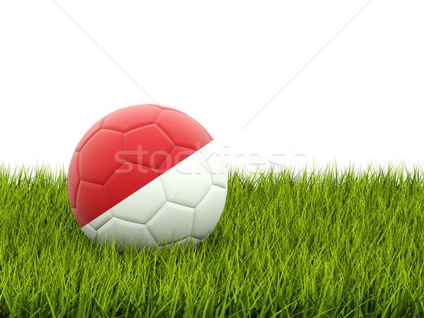 футбола флаг Монако зеленая трава Футбол Мир Сток-фото © MikhailMishchenko