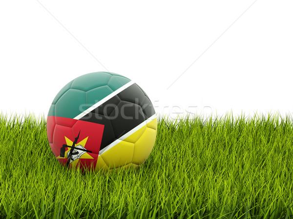 Futebol bandeira Moçambique grama verde futebol campo Foto stock © MikhailMishchenko