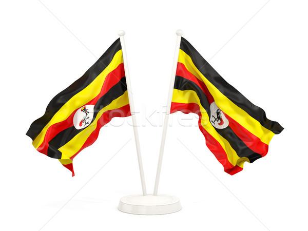 Kettő integet zászlók Uganda izolált fehér Stock fotó © MikhailMishchenko