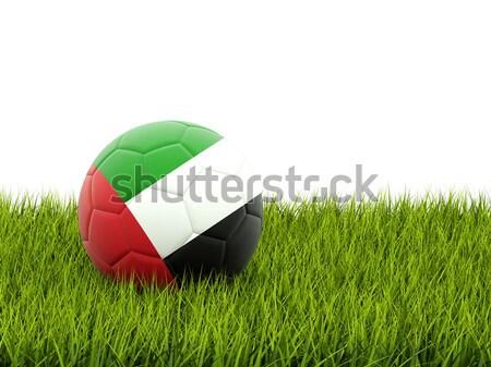 Futebol bandeira Emirados Árabes Unidos grama verde futebol esportes Foto stock © MikhailMishchenko