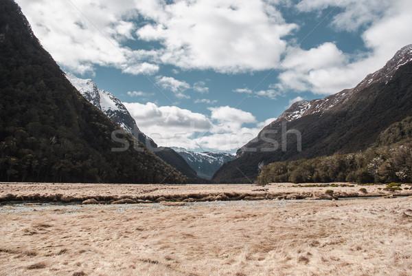Alpine paysages parc randonnée nouvelle Nouvelle-Zélande Photo stock © MikhailMishchenko