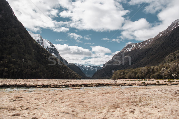 Alpine scenery at Mount Aspring national park. Hiking in New Zea Stock photo © MikhailMishchenko