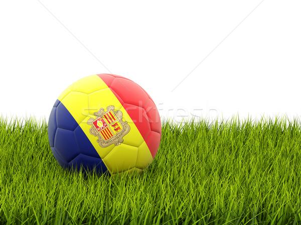 Fußball Flagge Andorra grünen Gras Fußball Bereich Stock foto © MikhailMishchenko