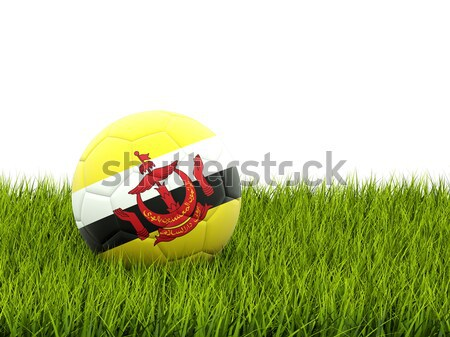 Football with flag of saint kitts and nevis Stock photo © MikhailMishchenko
