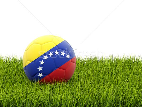 Futball zászló Venezuela zöld fű futball mező Stock fotó © MikhailMishchenko