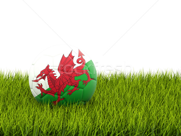 Football with flag of wales Stock photo © MikhailMishchenko