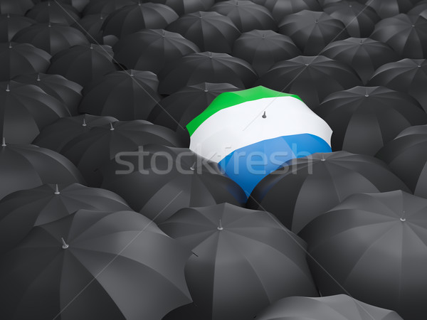 Umbrella with flag of sierra leone Stock photo © MikhailMishchenko