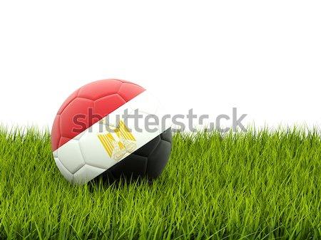 Voetbal vlag Soedan groen gras voetbal wereld Stockfoto © MikhailMishchenko