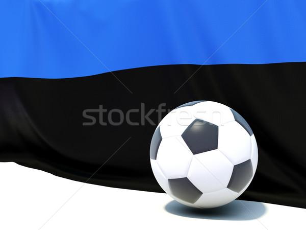 Vlag Estland voetbal team land Stockfoto © MikhailMishchenko