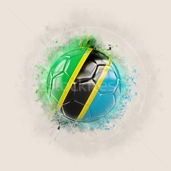 Grunge football pavillon Tanzanie 3d illustration monde Photo stock © MikhailMishchenko