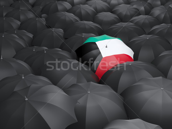Guarda-chuva bandeira Kuweit preto guarda-chuvas viajar Foto stock © MikhailMishchenko