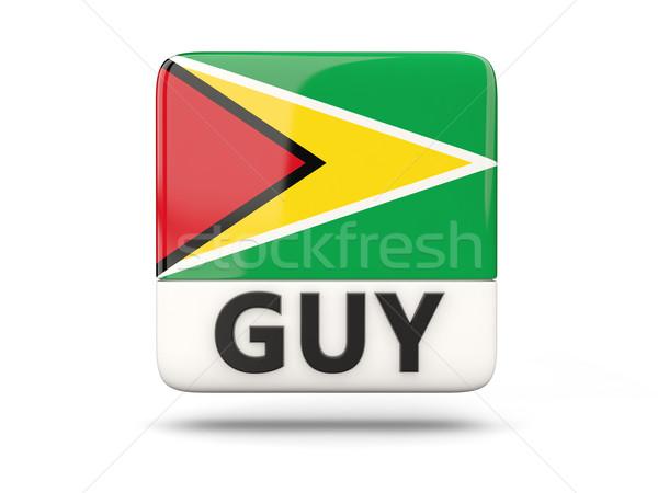 Tér ikon zászló Guyana iso kód Stock fotó © MikhailMishchenko