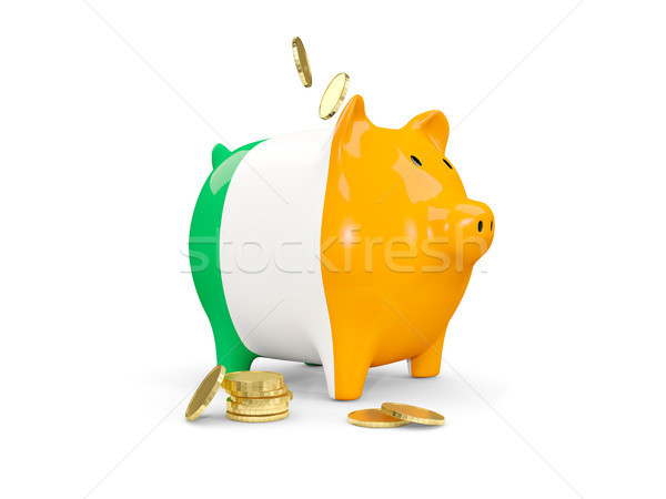 Vet spaarvarken Ierland geld geïsoleerd witte Stockfoto © MikhailMishchenko