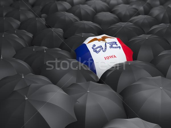 Iowa zászló esernyő Egyesült Államok helyi zászlók Stock fotó © MikhailMishchenko