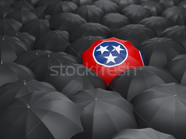 Tennesse bandera paraguas Estados Unidos local banderas Foto stock © MikhailMishchenko
