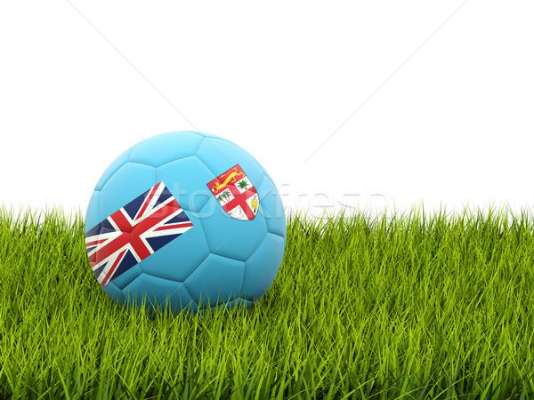 サッカー フラグ フィジー 緑の草 サッカー 世界 ストックフォト © MikhailMishchenko